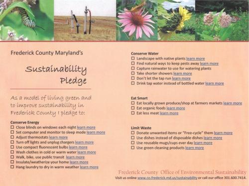 Sustainability flyer